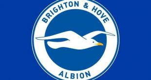 Brighton & Hove Albion fire manager Chris Hughton!