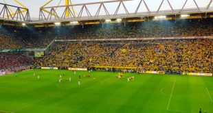 "Borussia Dortmund & VfB Stuttgart honoured with ""Pitch of the Year"" award!"